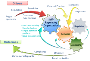 Self-Regulatory-Model-Advanced